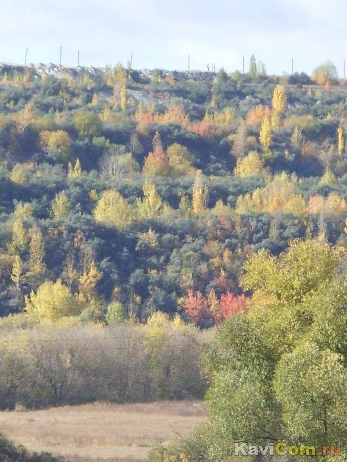 Осенью красивыми бывают даже отвалы.