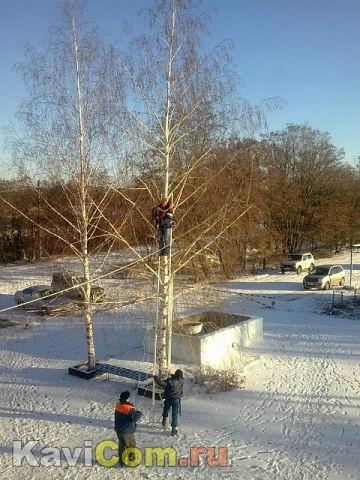 Снегири прилетели)