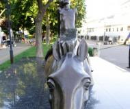 Плывущая лошадь
