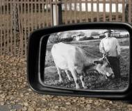 Зеркало в прошлое.