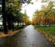 Мой город ...Осень