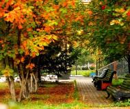 Осень   картинки  города