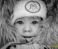 Остаёмся зимовать