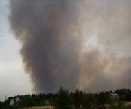 Пожар в лесополосе БСИ