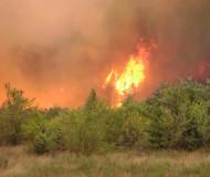 Лесной пожар в этот понедельник