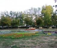 клумба в парковой зоне на Жукова