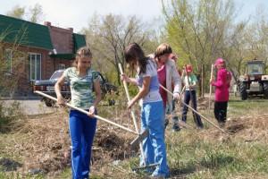 Итоги работы волонтерских групп в школьных оздоровительных лагерях