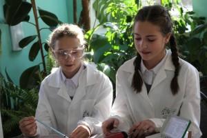 Повысить интерес к изучению природы