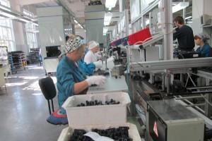 «СОАТЭ» завоевывает зарубежные рынки