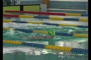 Первенство области по плаванию впервые — в Старом Осколе