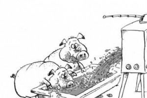 Антинародная программа: продукты питания страшно есть