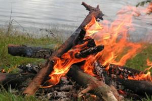 За 2 недели за сжигание травы и мусора оштрафованы 38 человек