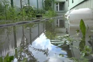 Кругом вода: на улице Прядченко затопило жилой дом
