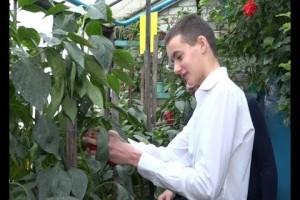 100 тысяч рублей на реализацию авторского проекта получил молодой агроном из Ивановки