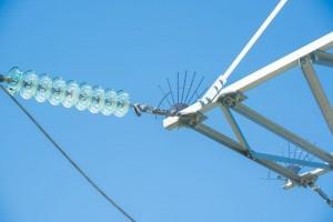Для защиты пернатых Белгородэнерго установит на опорах ЛЭП порядка  700 птицезащитных устройств