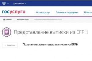 Выписки из ЕГРН можно получить на портале Gosuslugi.ru