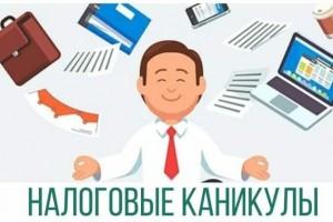 Белгородским предпринимателям на УСН и на патенте продлили налоговые каникулы до конца 2023 года