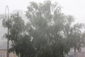 Внимание! Завтра на территории региона ожидаются дожди и порывы ветра до 20 м/с