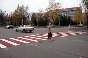 В Белгородской области идет «Охота на зебру»