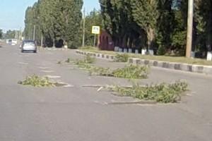 Внедрены новые технологии ремонта дорог.