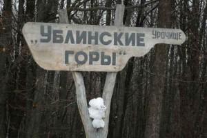 В регионе началась операция «Лес»