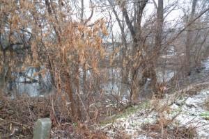 Река Осколец в опасности!