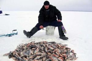 Старооскольские рыболовы победили в чемпионате Курской области