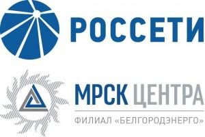 Заявки на подключение к сетям Белгородэнерго принимает в электронном виде