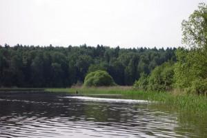 В Старом Осколе восьмилетний мальчик утонул в реке