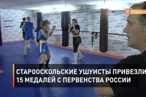 Старооскольские ушуисты привезли 15 медалей с первенства России