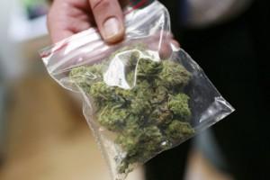 В подвале старооскольской школы найдено около 60 граммов марихуаны