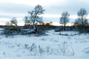 Сказочная зима в Приосколье