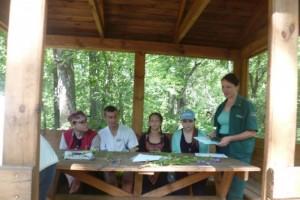 Юные  исследователи уделили внимание старооскольскому лесу