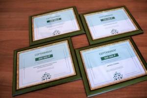 В Старом Осколе реализуют 20 проектов грантовой программы «Стальное дерево»