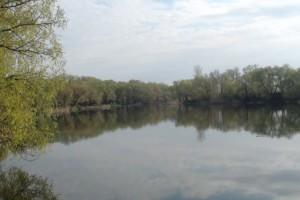 В Белгородской области утонул 16-летний подросток