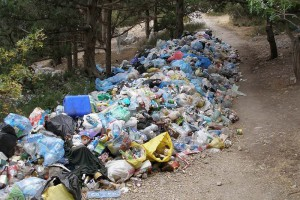 Что делать, если вы стали свидетелем совершения экологического правонарушения