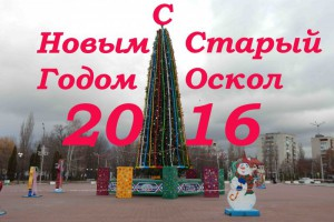 Новогодние елки Старого Оскола. Предновогодний фоторепортаж.