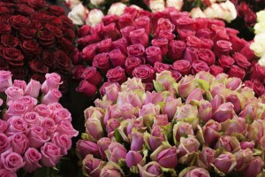 Хочу цветов! (в преддверии 8 марта)