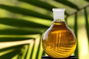 «Пальма» атакует: крупнейший импортер пальмового масла объявил войну Росконтролю