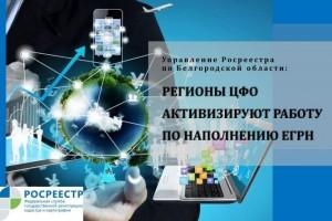 Управление Росреестра по Белгородской области: Регионы ЦФО активизируют работу по наполнению ЕГРН