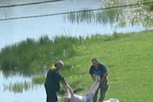 За неделю в водоемах области утонули три человека, четверо утопающих были спасены.