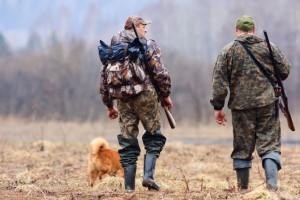Утверждены лимиты для охотников на новый сезон