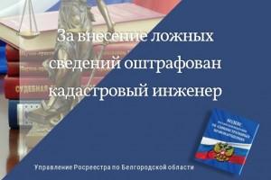 В Белгородской области за внесение ложных сведений  оштрафован кадастровый инженер