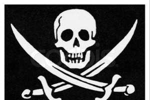Пираты в Белгородской области.