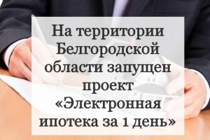 На территории Белгородской области запущен проект «Электронная ипотека за 1 день»