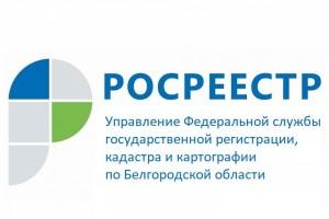 Жители Белгородской области могут подать документы в Росреестр через кадастрового инженера
