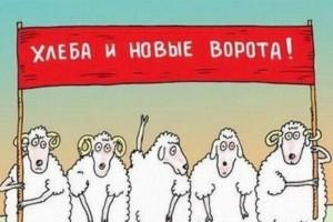 Белгородские ворюги ищут новые лазейки