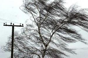 Внимание! Ожидается выпадение осадков в виде дождя и порывы ветра до 20 м/с