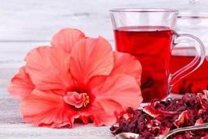 8 полезных свойств чая каркаде, которые омолодят вас