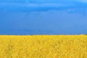 Взгляд на события в Украине
